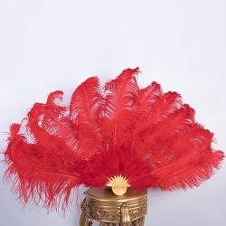 Ostrich Feather Fan Red