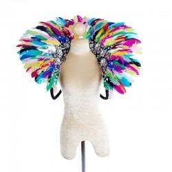 Duck Feather Collar Multi Colour