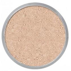 Kryolan Translucent Powder 60gm TL 9
