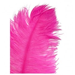 Ostrich Feather Plume 55-60cm Hot Pink