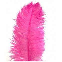 Ostrich Feather Plume 60cm Hot Pink