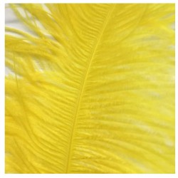 Ostrich Feather Plume 60cm Yellow