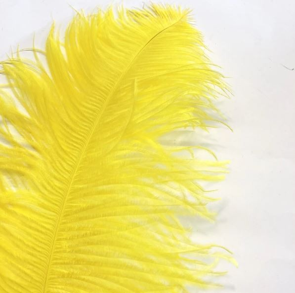 Ostrich Feather Plume 55-60cm Yellow