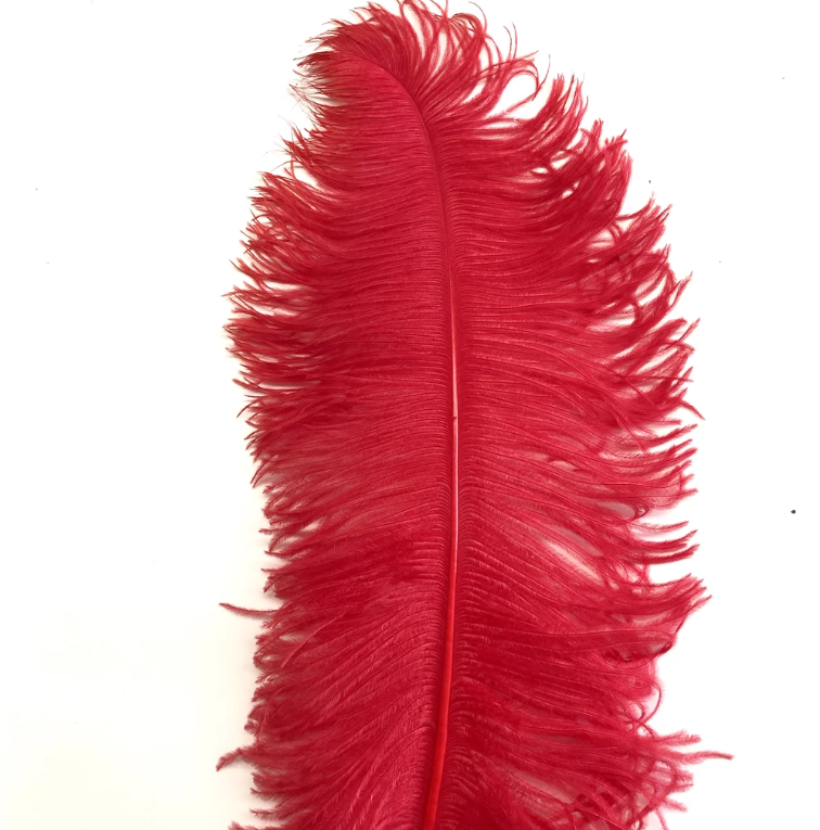 Ostrich Feather Plume 55-60cm Red