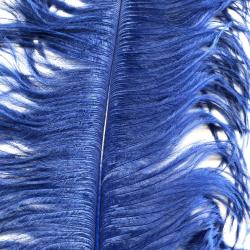 Ostrich Feather Plume 55-60cm Royal Blue