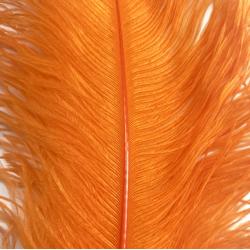 Ostrich Feather Plume 55-60cm Orange