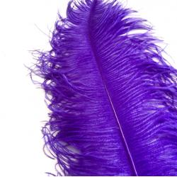 Ostrich Feather Plume 55-60cm Dark Purple