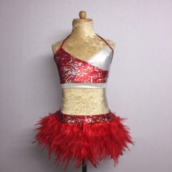 USA Foil Crop Top and Feather Skirt Red
