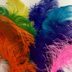 Custom Colour Ostrich Feather Fan