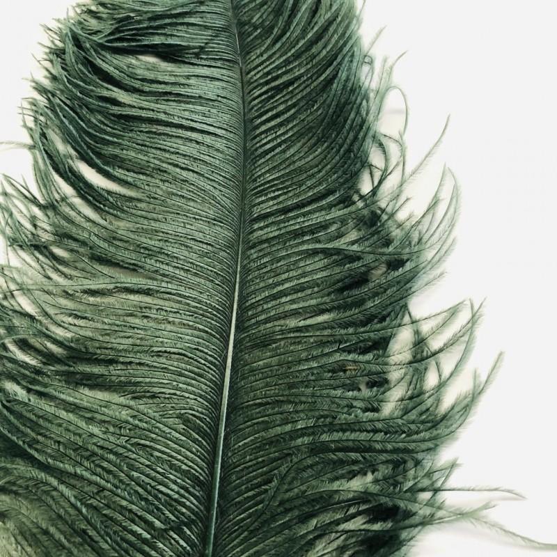 Ostrich Feather Plume 55-60cm Dark Green