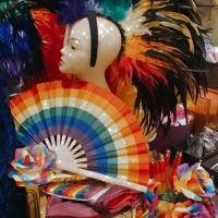Ready for festival 🌈🌈🌈 #houseofpriscilla #mardigras #costume #🌈 #❤️